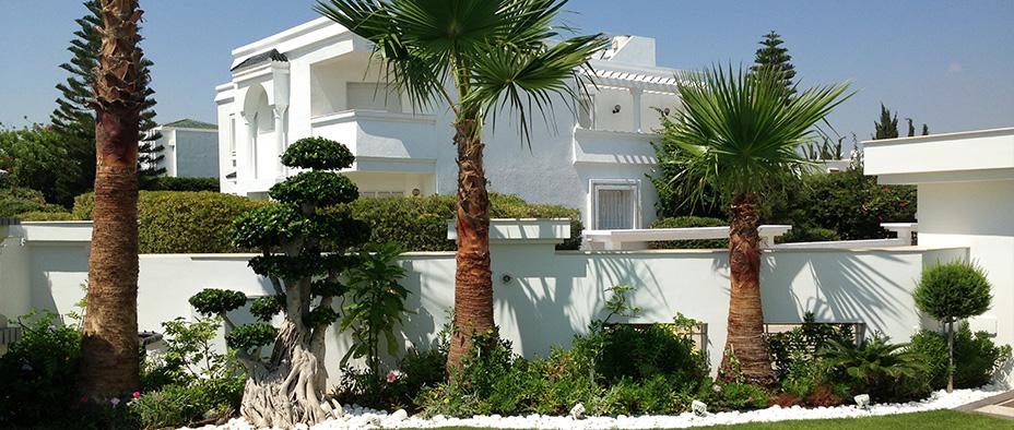 Tunisie garden plantes d 39 int rieur for Vente plantes artificielles tunisie